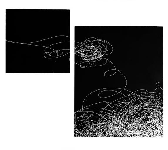Julie Levesque, 'Tangled II', 2019, Rice Polak Gallery
