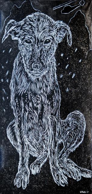 , 'Tora Bora Puppy,' , Nanda\Hobbs