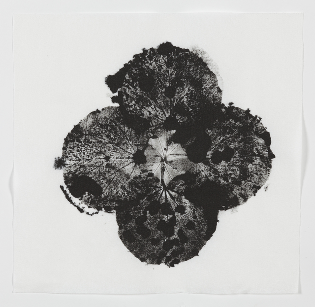 , 'The Transit of Venus,' 2014, Collectors Contemporary