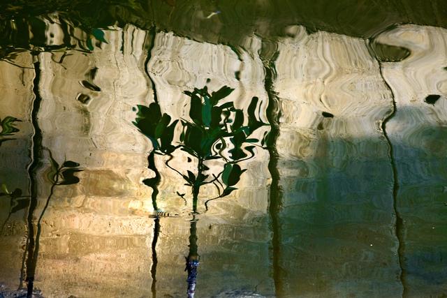 , 'Water's Manifestations,' 2011, Da Xiang Art Space