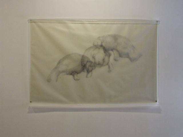 , 'Three Manatees,' 2009, Fort Worth Contemporary Arts