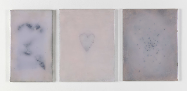 Adriano Amaral, 'Untitled', 2020, Painting, Aluminium frames, rigid foam, prosthetic rubber, seeds, prints and pigments on panel (triptych), Galerie Fons Welters