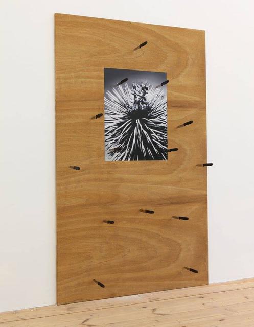 Thorsten Kirchhoff, 'Questione spinosa', 2018, Montoro12 Contemporary Art