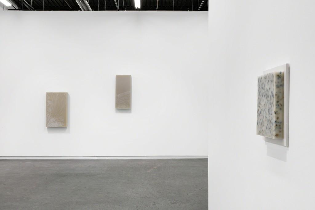 Installation view of Iris Häussler at Daniel Faria Gallery, 2019