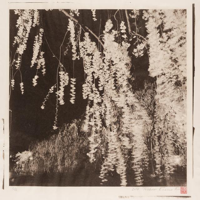 , 'Shidare-Zakura under the Moon 2, Hirosaki Castle, Aomori,' 2014, Micheko Galerie