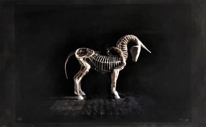 1984 Unicorn