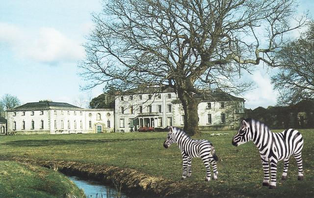 , 'Strokestown Demesne With Zebras,' 2013, Wilding Cran Gallery