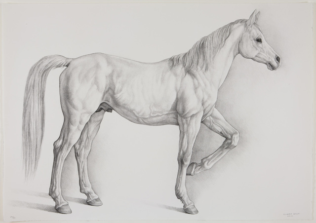 , 'Caballo Blanco,' 2008, Marlborough Gallery