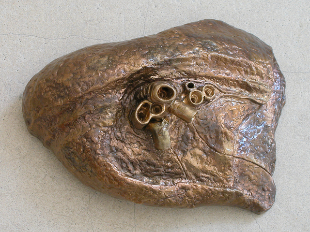 , 'Lungs,' 2004, Galerie Krinzinger