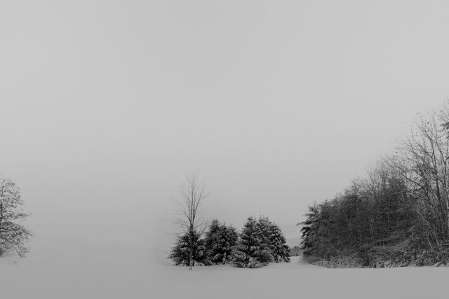 , 'Snow and Trees in the Distance ,' 2016-18, Carrie Haddad Gallery