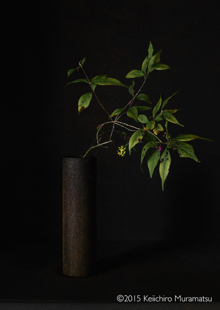 , 'A Stage Beautyberry 4-8,' 2015, Galerie Marie-Robin