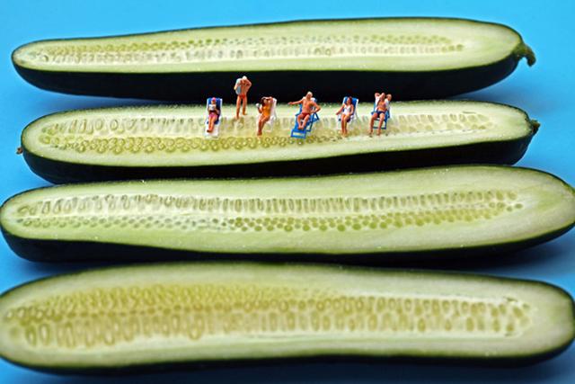 , 'Cucumber Sunbathers,' 2011, Winston Wächter Fine Art