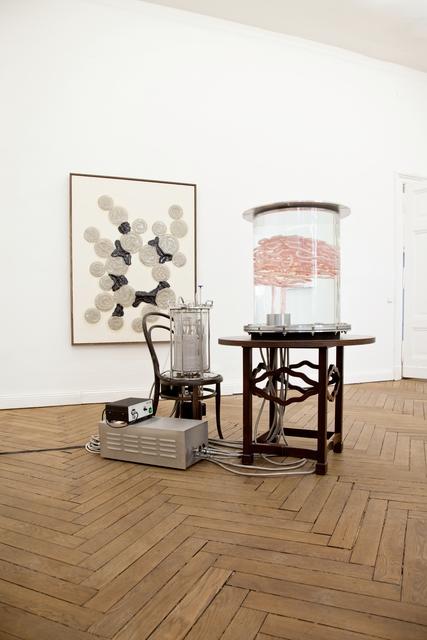 , 'Pancreas (Alles Fleisch),' 2009-2013, Galerie Elisabeth & Klaus Thoman