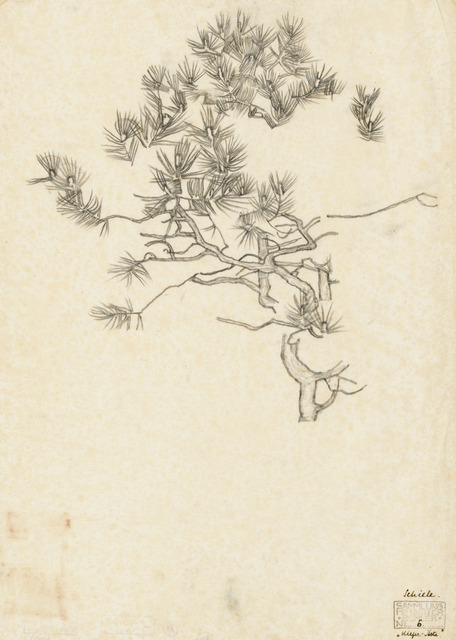 , 'Pine Branches,' 1915, Galerie St. Etienne