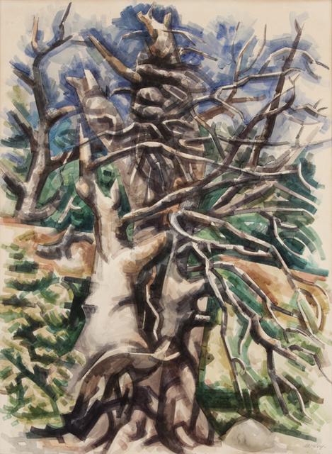 , 'Broken Cypress,' 1956, Valley House Gallery & Sculpture Garden