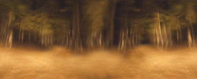 , 'Panorama of Forest, Italy,' 2013, C. Grimaldis Gallery