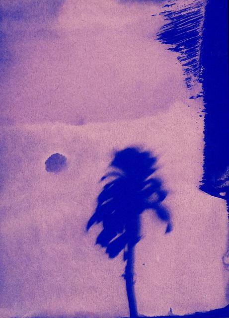 , 'Little Palm, II,' 2020, Open Doors Gallery