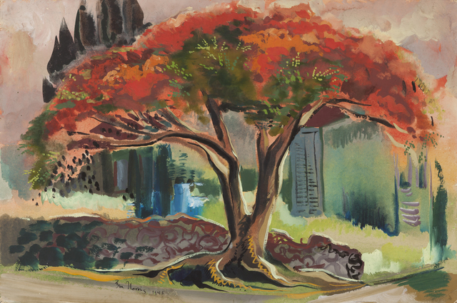 , 'Poinciana Tree,' 1945, Childs Gallery