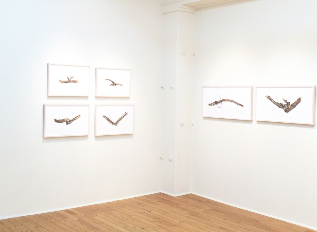 David Morrison 'Sticks'. Installation Shot.