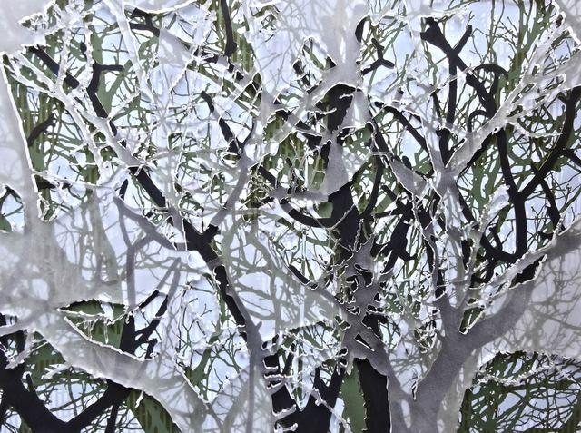 , 'Tree #23,' 2014, Puerta Roja