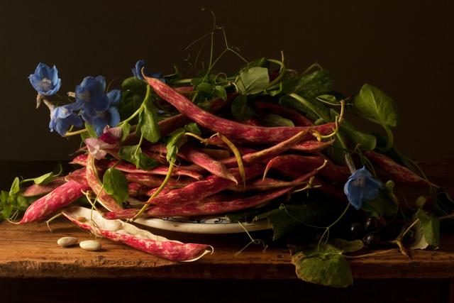 , 'Cranberry Beans, after G.G.,' 2009, Robert Klein Gallery
