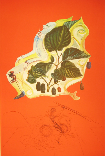 Salvador Dalí, 'Blackberries', 1970, Print, Lithograph with original drypoint remarque, DTR Modern Galleries