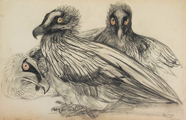 , 'Three young bearded vultures,' ca. 1880, Mireille Mosler Ltd.