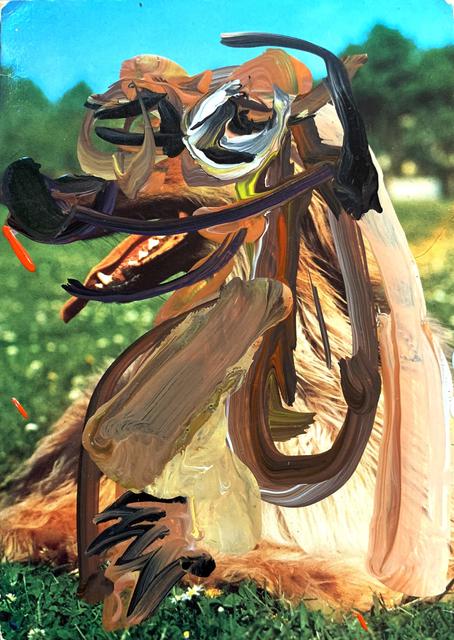 Raychael Stine, 'untitled', 2016, Richard Levy Gallery