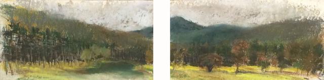 Ray Ruseckas, 'Looking West in Townsend', 2009, CYNTHIA-REEVES