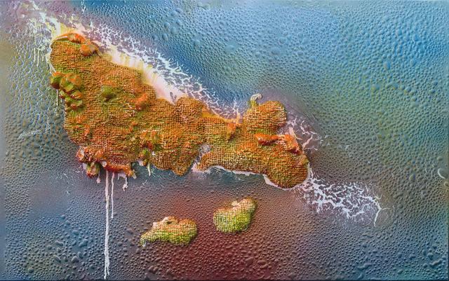, 'The Great Barrier ReefI,' 2018, Richard Koh Fine Art