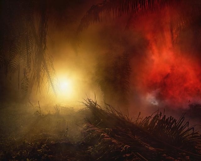 , 'An Invitation to Disappear - Tawan,' 2018, Hosfelt Gallery
