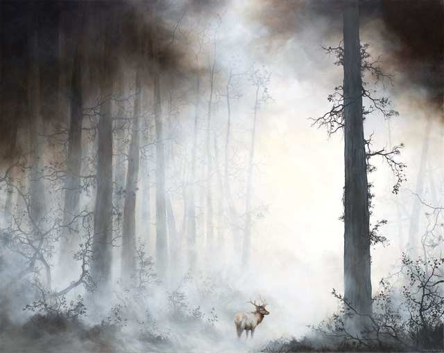 Brian Mashburn, 'Old Growth', 2018, Painting, Oil on canvas, Haven Gallery