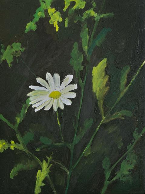 Sarah Osborne, 'Marguerite', 2018, Projet Pangée