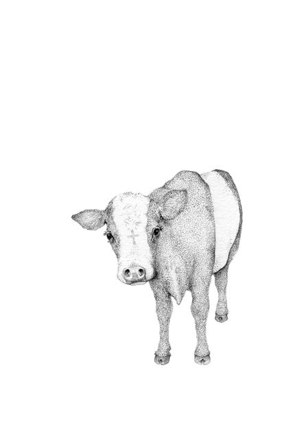 , 'Holy Cow,' 2014, Rebecca Hossack Art Gallery