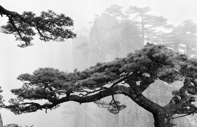 , 'Mou Huangshan A055W53,' 1975, Three Shadows +3 gallery