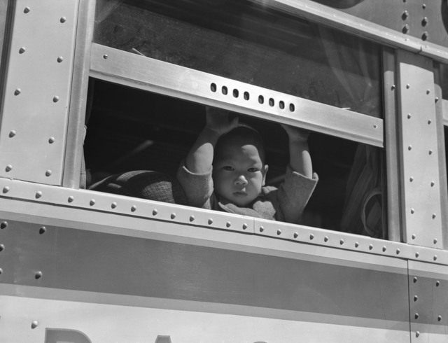 Dorothea Lange, 'Young Child at the Window', 1942, The Perfect Exposure Gallery