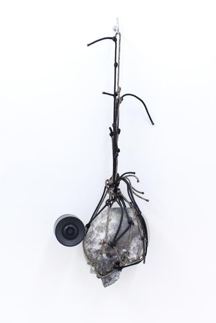, 'birds, flies,' 2016, 315 Gallery