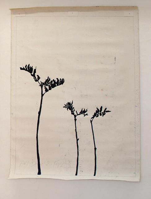 , 'Schatten/Pflanzen,' 2013, Artdepot