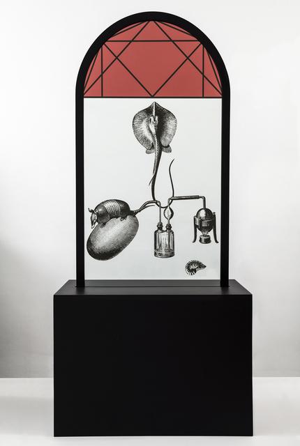 , 'Da série Fantasmas,' 2015, Galeria Rosa Barbosa