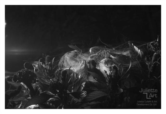 , 'The Light of Dark Night No.16,' 2013, Juliette Culture and Art Development Co. Ltd.