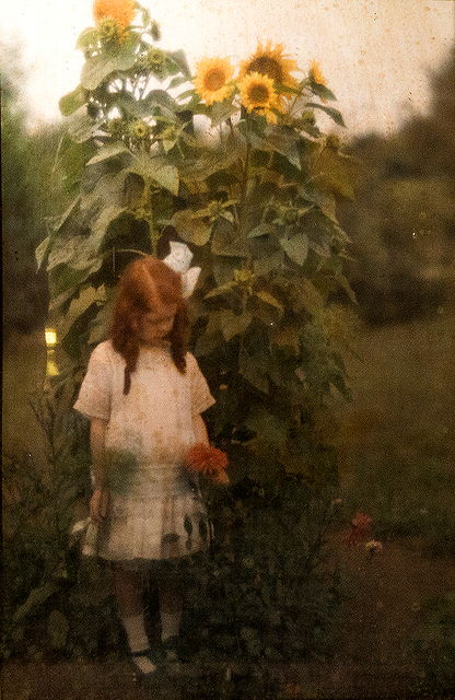 , 'Arnold Genthe, Girl and Sunflower - Autochrome in a Diascope,' 1910-1920, Be-hold