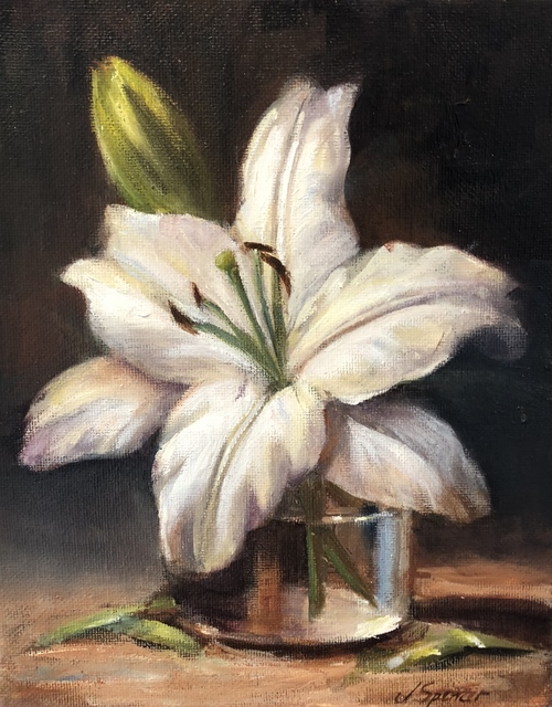 , 'White Lily Bloom,' , Stafford Gallery