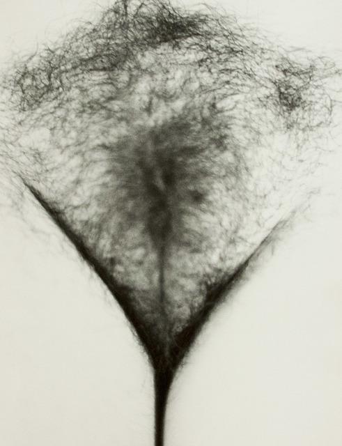 , 'Untitled,' 1978, Art Portfolio, Inc.
