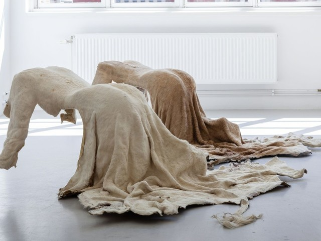 Body Casts and Body Prints