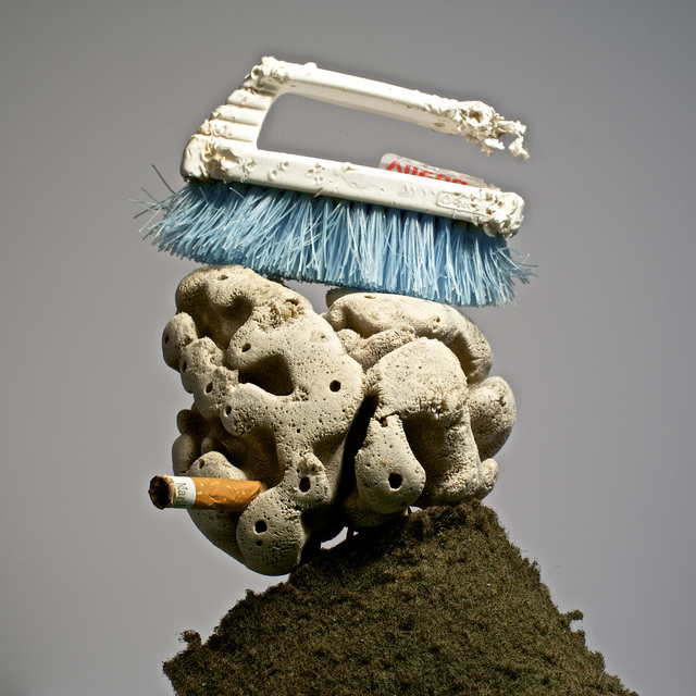 , 'Lavandero Marino (Marine Laundryman), from the Series: Pequeños monstruos de playa,' 2014, Knoerle & Baettig Contemporary
