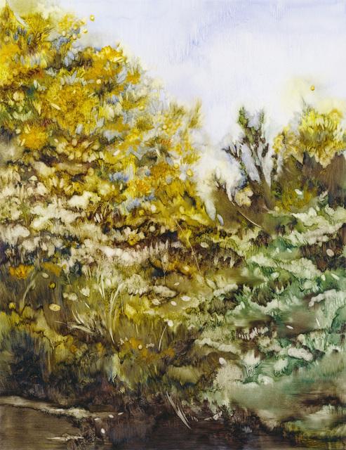 , 'Fynbos,' 2016, Barnard