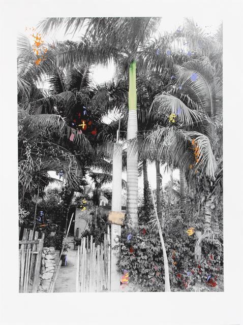 , 'Belize ,' 2019, Jealous Gallery
