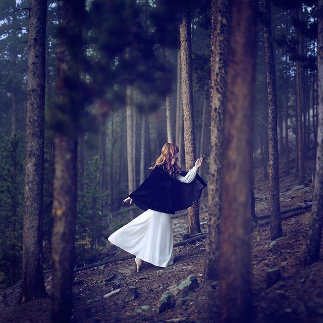 , 'The Forest,' 2013, Jen Mauldin Gallery