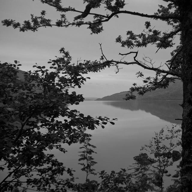 Astrid Kruse Jensen, 'The Lake', 2015, Photography, Archival fiber print, Martin Asbæk Gallery