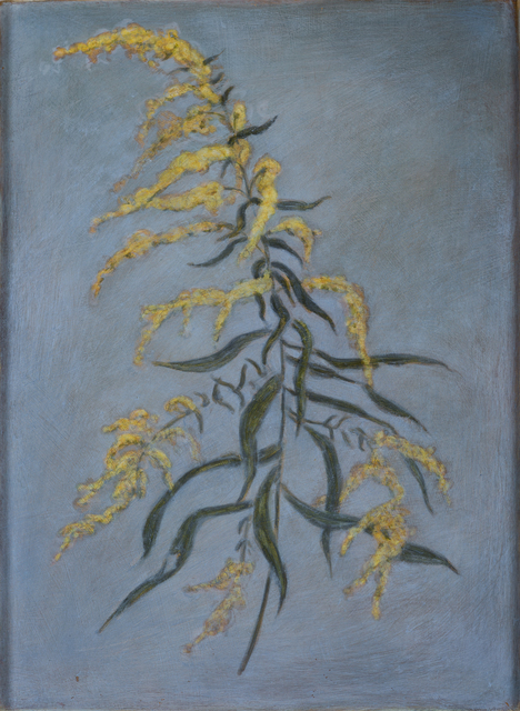 , 'Goldenrod,' 2001, Pucker Gallery